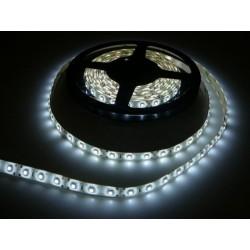 LED pásek 4.8W, 60 LED, zalitý IP 50 economy - Studená bílá