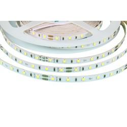 LED pásek 24V HQ 60LED 4.8W vnitřní - Studená bílá