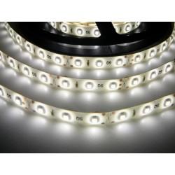 LED pásek 4.8W, 60 LED, Zalitý IP 50 - Denní bílá