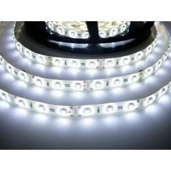LED pásek 4.8W, 60 LED, Zalitý IP 50 - Studená bílá