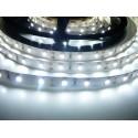 LED pásek 12W, 60 LED, Nezalitý IP 20 - Studená bílá