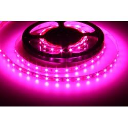 LED pásek 12V GROW 60 LED 12W-FULL spektrum pro rostliny