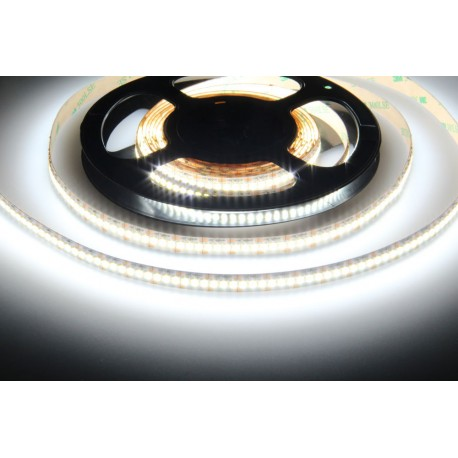 LED pásek 12V 240LED 24W - Studená bílá